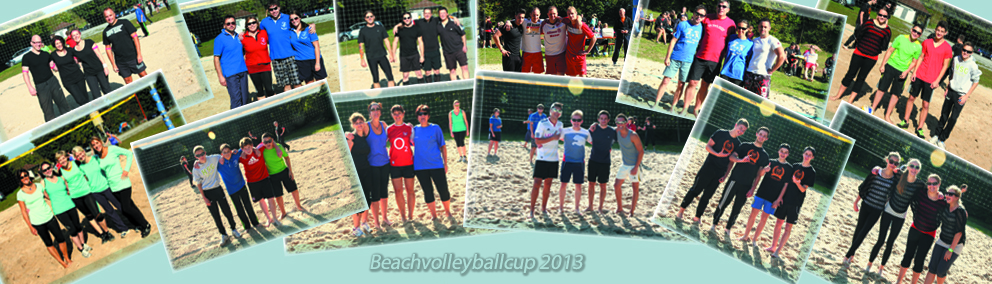 Beachvolleyballcup 2013
